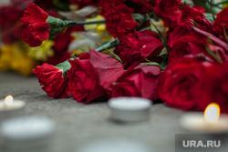Посольство Бельгии. Москва, гвоздики, цветы