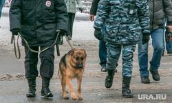 Курганская полиция. афиша Матильды. Курган, полиция, полицейская собака