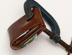 Открытая лицензия 17.06.2015. Банкрот., кошелек, банкрот, деньги