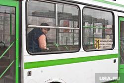 Городские автобусы. Тюмень, кондуктор, автобус