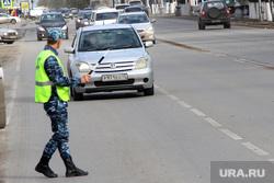 Пикет КПРФ Курган, проверка на дороге, дпс, жезл