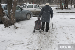 Снегопад в конце марта. Челябинск, пенсионер, снегопад, старушка, тележка