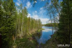Виды ПГТ Пойковский, лес, природа, речка