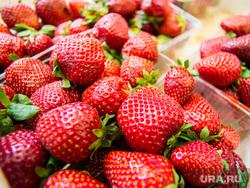 Клубника и вишня. Екатеринбург, ягоды, клубника