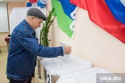 Выборы губернатора Тюменской области. Нижневартовск., урна для голосования, выборы, избиратель