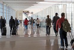 Новиков Илья, туристы, пассажиры, чемоданы, аэропорт, путешествие