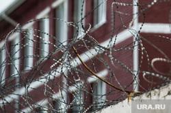 Первое сентября в кировоградской колонии для несовершеннолетних, колючая проволока, зона, тюрьма, место заключения, отбывание наказания