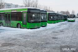 Депутатский рейд по автобусам Тюмень, автобус, автобусный парк