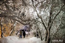 Виды Салехарда, мороз, зима, городской сад, иней, снег, парк