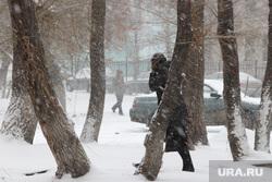 Курган в снегу, вьюга, непогода, метель