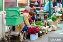 Репортаж по мусорным войнам из Миасса, уличная торговля, садоводы, цветы, пенсионеры, зелень