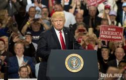 Дональд Трамп, москитная сетка, дети в окне, регистрация автомобиля, выпускной бал , трамп дональд
