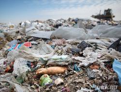 Полигон ТБО и цех сортировки. «Спецавтобаза». Екатеринбург, мусор, расчлененка, свалка, лка, тбо, детское насилие