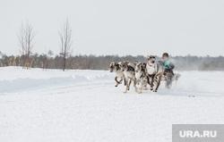 Слет охотников, рыбаков и оленеводов в д.Русскинская,  Сургут  , ханты, кмнс, аборигены, коренное население, гонки на оленях