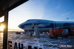 Прибытие рейса из Амстердама в Кольцово с цветами на борту. Екатеринбург, самолет, боинг 747