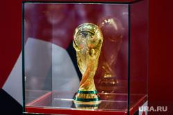 Презентация Кубка Чемпионата мира по футболу FIFA в цехе