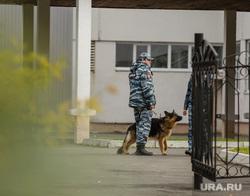 Эвакуация 18 школы после обнаружения предмета похожего на взрывное устройство. Сургут, кинолог, служебная собака, полиция, школа18, бомба в школе