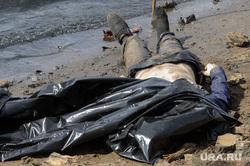 Тело мужчины на отмели Городского пруда в начале улицы Первомайская. Екатеринбург, берег, труп, тело, мертвец, утопленник, покойник