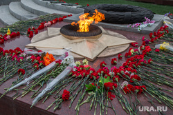 Подготовка к 9 мая в Кургане , гвоздики, вечный огонь, цветы на монументе