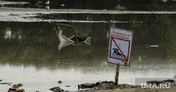 Виды Екатеринбурга, мусор, экология, купание, досуг, грязь, отдых, водоем, отмель, дно, загрязнение окружающей среды, запрещено купаться