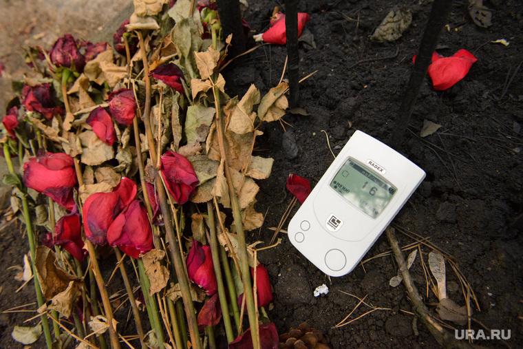 """Могила """"дятловца"""" Семена Золотарева. Екатеринбург, замер радиации, земля, цветы завяли"""
