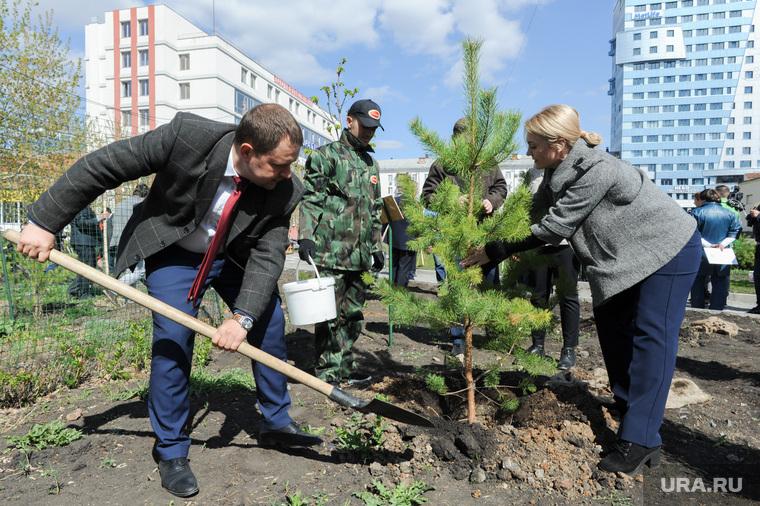 Высадка деревьев в Литературном сквере, возле Челябинской областной публичной библиотеки. Челябинск, лавров сергей, соколова екатерина, высадка сосны