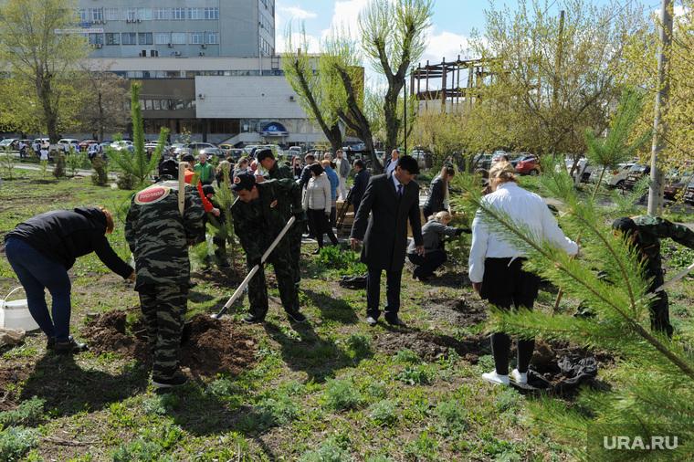 Высадка деревьев в Литературном сквере, возле Челябинской областной публичной библиотеки. Челябинск, высадка деревьев