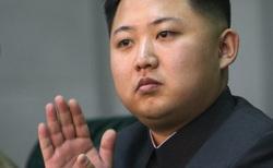 Открытая лицензия 15.07.2015. Ким Чен Ын., ким чен ын