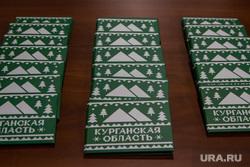 Инвестиционное послание губернатора Курганской области Алексея Кокорина. Курган, курганская область, карта предпринимателя, бренд-бук области