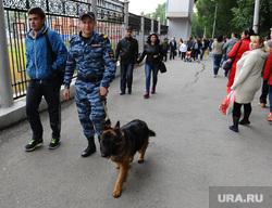 День металлурга. Мечел. Металлургический район. Челябинск., собака, полиция, обход, патруль