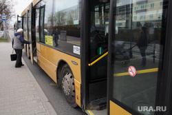 Виды Перми, остановка, автобус, общественный транспорт