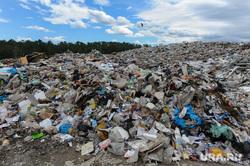 Репортаж по мусорным войнам из Миасса, тбо, свалка