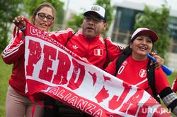 Прибытие сборной Перу по футболу в отель Ramada. Екатеринбург , эмоции, болельщики из перу