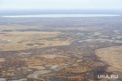 Природа Ямало-Ненецкого автономного округа, север, тундра, арктика, ямал, природа ямала, вид сверху, осень, с квадрокоптера