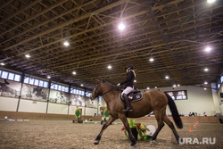 Звездный конкур. (часть). Екатеринбург, лошадь, конкур, кск дубрава