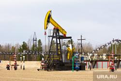 Роснефть. Нижневартовск , нефть, роснефть, качалка