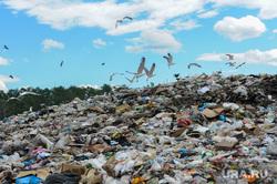 Репортаж по мусорным войнам из Миасса, васильевская свалка