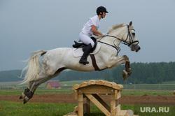 Областной Сабантуй - 2016. Кадниково, лошади, скачки, верховая езда