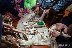 Жизнь оленеводов. Сургут, сырая рыба, ханты, кмнс, прием пищи, строганина
