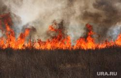 Космос, планеты, лесные пожары, ураган, природные катаклизмы, экология, пламя, дым в лесу, лесные пожары, огонь, пожар, тушение пожара, пожарник, пожарный, природа