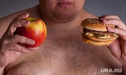 Клипарт. Ожирение, толстые люди, студенты на лекциях, выборы США, гаубица, баллистическая ракета, бургер, толстые люди, полные люди, лишний вес, толстяк, жирные люди, толстый живот