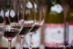 Дегустация молодого вина Божоле Нуво накануне одноименного французского праздника «Нового Божоле». Екатеринбург, алкоголь, красное вино, дегустация вина, выпивка