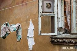 Клипарт, разное. Екатеринбург, старый дом, барак, кот, сушится одежда, домашние животные, питомец, жилье