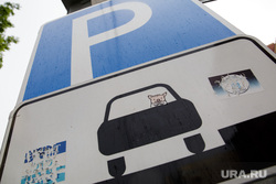 Паркоматы в зоне платной парковки. Пермь, свинья, свинка, парковка