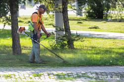Покос травы после визита Николая Цуканова. Челябинск, газонокосильщик, трава, газон