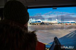 Прибытие рейса из Амстердама в Кольцово с цветами на борту. Екатеринбург, самолеты, вид из окна автобуса