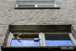 Виды Екатеринбурга, кот, домашние животные, домашний питомец, окно