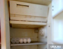 Клипарт, яйца, холодильник