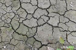 Засуха. Челябинск., засуха, такыр, земля, сушь