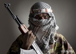 Терроризм, террористы , терроризм, маджахед